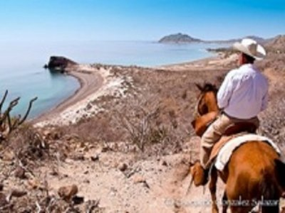 Cabo Pulmo Watersports Cabalgatas