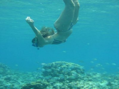 Aventura y Rafting Snorkel