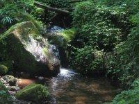 Caañada del Arroyo del Agua