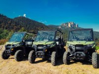 We have adequate vehicles for each terrain