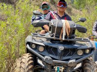 Route in ATVs through the forest