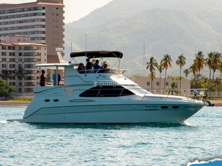 Boat rental in Puerto Vallarta