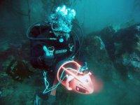 Diving in Baja