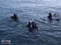 Divers in open water