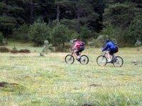 A cycling ride