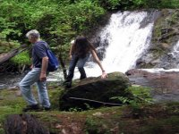 Waterfall excursions