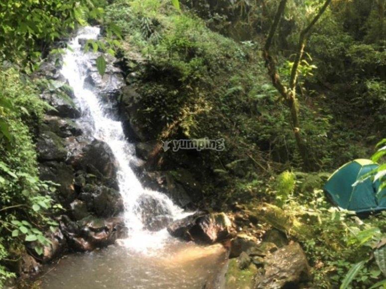 Caída de agua de la cascada