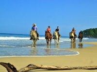 Recorrido grupal en caballo