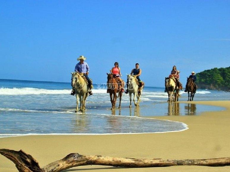 Tour guiado por las playas de Los Cabos