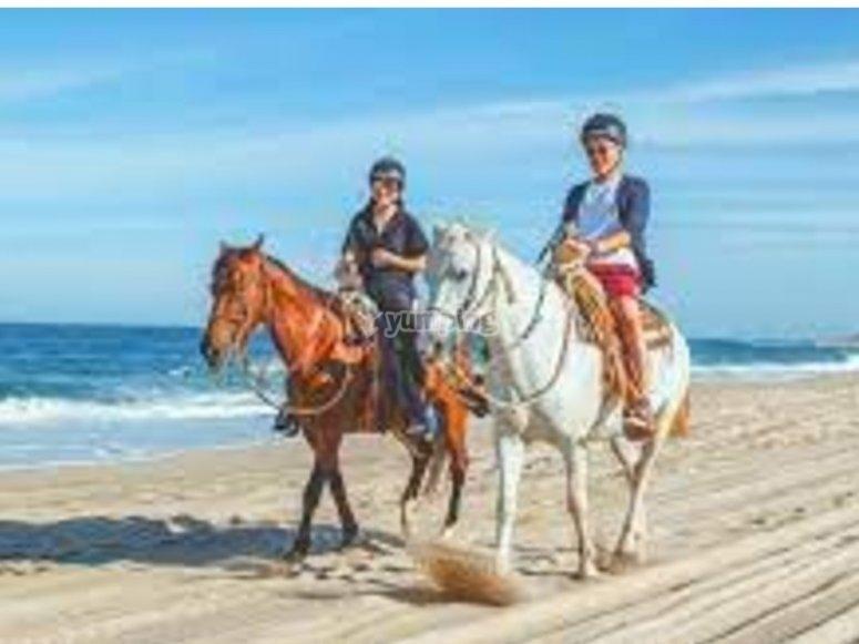 Pasea en caballo por los Cabos