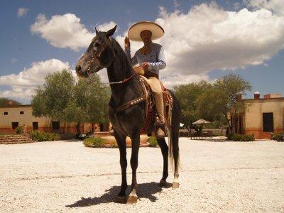 Viñedos Azteca Cabalgatas