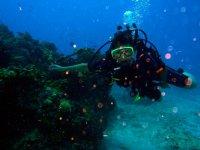 Diversion bajo el agua