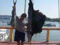 Fishing sailfish