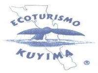Kuyima Tours Whale Watching