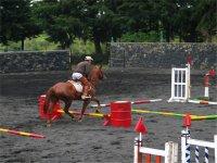 Equestrian school