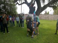 Activities and group dynamics
