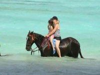 Our horseback riding