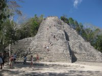 Get to know Coba