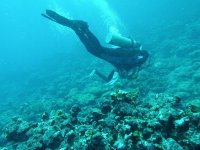 Diving in reefs