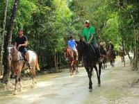 Grupo de cabalgata en selva maya