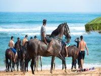 Playa en el caribe mexicano mientras vas en cabalgata