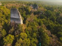 Aerial view of the Mayan jungle