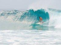 clases de surf en veracruz