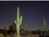 desierto de noche