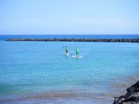Paddle surf on the shore