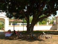 Cycling in Oaxaca