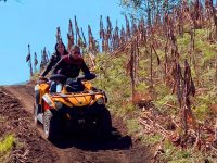 Ride the route on an ATV