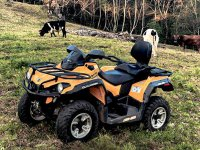 Move in a two-seater or single-seater quad