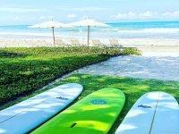 Surf en puerto vallarta
