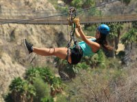 Zip lines in the canyon