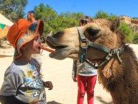 Enseña a tus hijos el amor por los animales