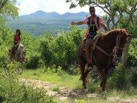 Nuestros preciosos caballos