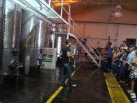 Fabricacion de vino