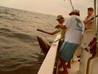 Pescando atun
