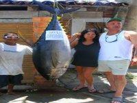 Pesca atun