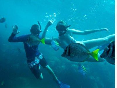 Cabo Adventures Snorkel