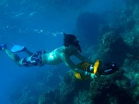 Exploring the sea with snorkeling