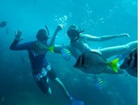 Swimming with snorkeling