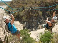 Canopy adventurers