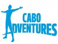 Cabo Adventures Nado con Delfines
