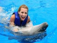 Nadando con los delfines