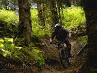 Baja por las rutas en una bicicleta de montaña