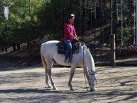 Diviértete montando a caballo