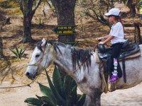 Da un paseo a caballo en las instalaciones