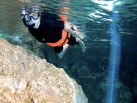 Image from the cenote