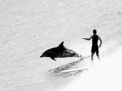 Baja Waterman